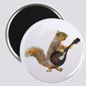 Squirrel Mandolin Magnets