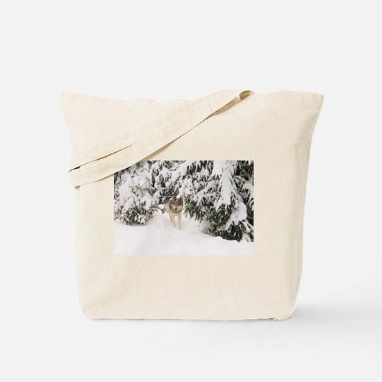 """""""Royalty"""" Tote Bag"""