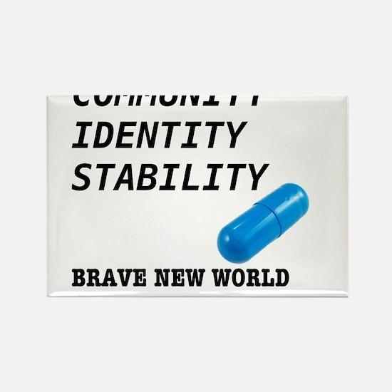 Community, Identity, Stability Rectangle Magnet