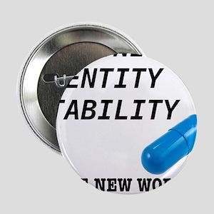 "Community, Identity, Stability 2.25"" Button"