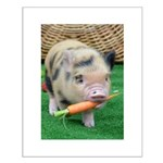 Micro pig with carrot Poster Design