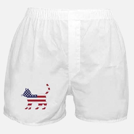 US Flag Cat Icon Boxer Shorts
