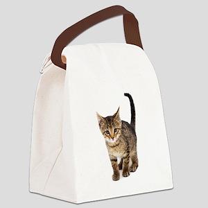 Cute Brown Tabby Kitten Canvas Lunch Bag