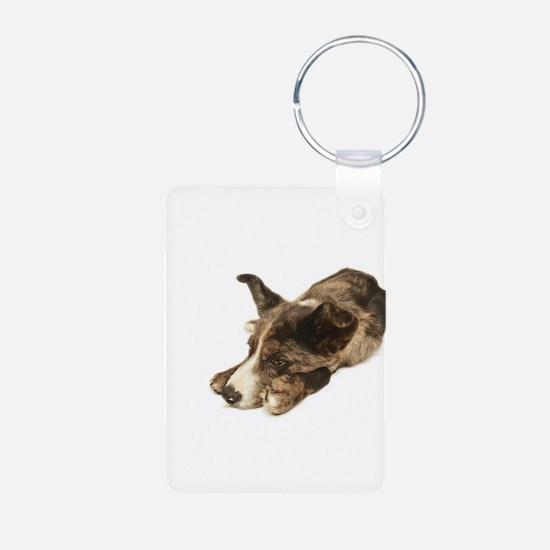 Adorable Rescue Australian Shepherd Mix Keychains