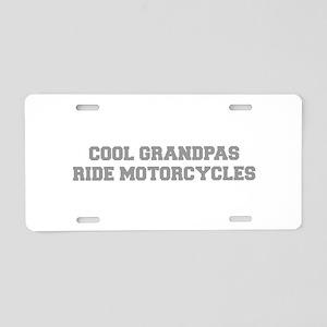 cool-grandpas-ride-motorcycles-fresh-gray Aluminum