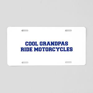 cool-grandpas-ride-motorcycles-fresh-blue Aluminum