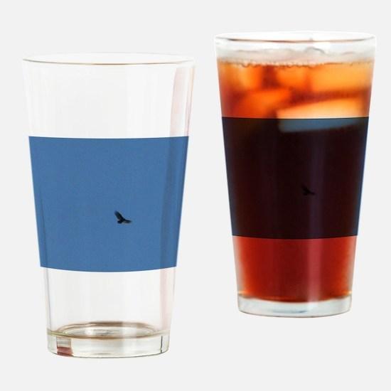 Soar Drinking Glass