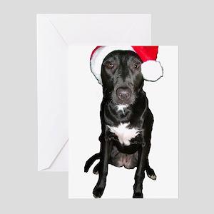 Dog Santa Cards (Pk of 10)