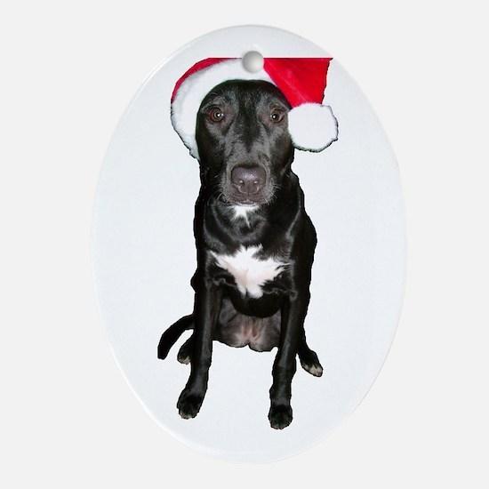Dog Santa Christmas Oval Ornament