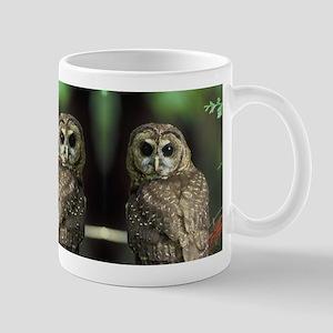 Who Gives Two Hoots Mug