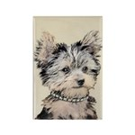 Yorkshire Terrier Pupp Rectangle Magnet (100 pack)