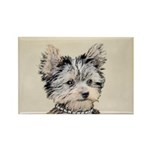 Yorkshire Terrier Puppy Rectangle Magnet (10 pack)