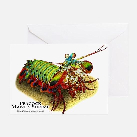 Peacock Mantis Shrimp Greeting Card