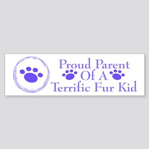 Terrific Fur Kid 222 Bumper Sticker