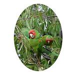 Cherryhead Duo Oval Ornament