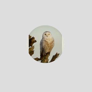 Snow Owl Mini Button