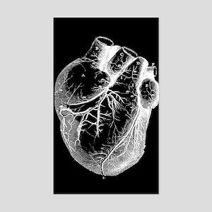 Anatomical Heart Sticker (Rectangle)