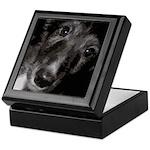 Silken Puppy Love Keepsake Box