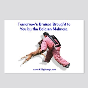 Bruises by Malinois Postcards (Package of 8)