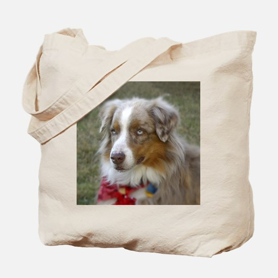 Australian ShepardTote Bag 10 commandmnts dogs