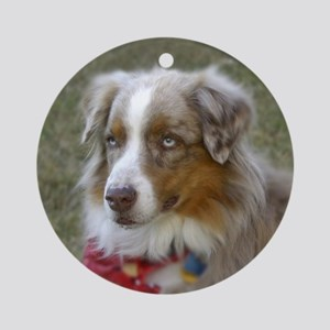 australian shepard dog Ornament (Round)