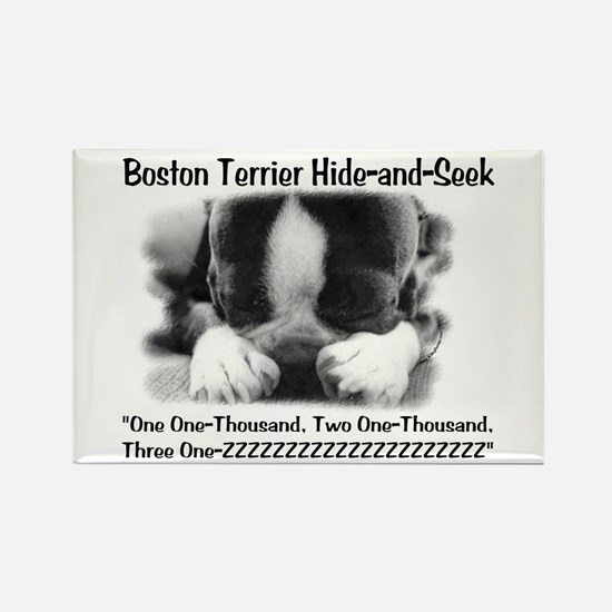 Boston Hide and Seek Rectangle Magnet