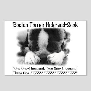 Boston Hide and Seek Postcards (Package of 8)