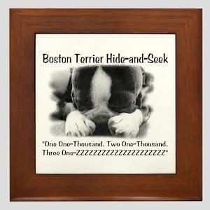 Boston Hide and Seek Framed Tile