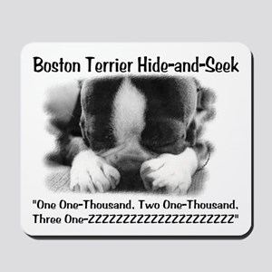 Boston Hide and Seek Mousepad