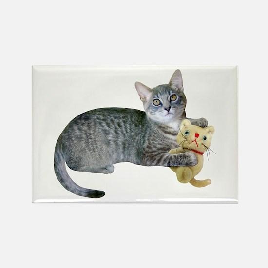 Kitten Stuffed Cat Rectangle Magnet