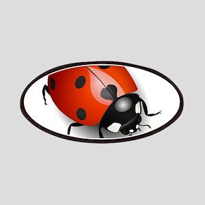 Shiny Ladybug Patches