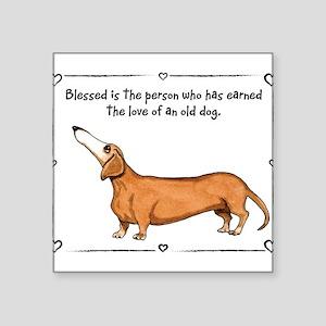 Old dog Love Sticker