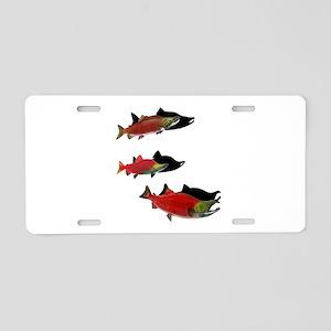 SHADOWS SHOW Aluminum License Plate