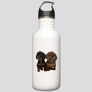 Dachshunds Stainless Water Bottle 1.0L