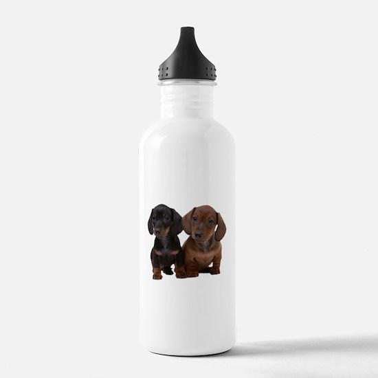 Dachshunds Water Bottle