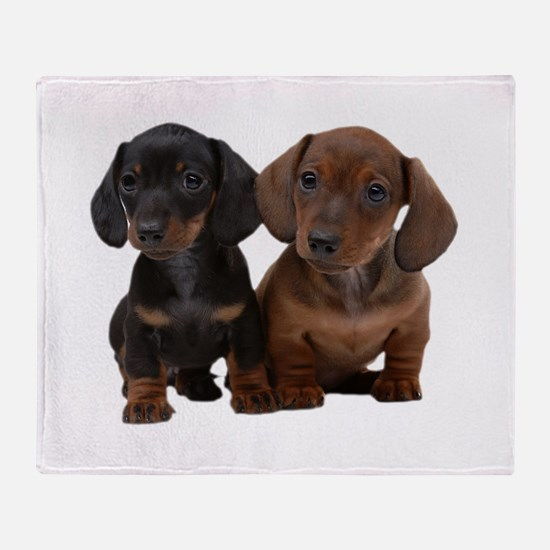 Dachshunds Throw Blanket