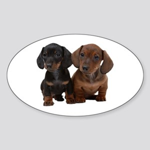 Dachshunds Sticker (Oval)