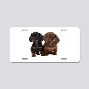 Dachshunds Aluminum License Plate