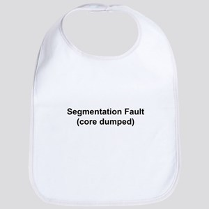 Segmentation Fault Bib