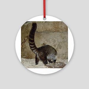 white-nosed coati Ornament (Round)