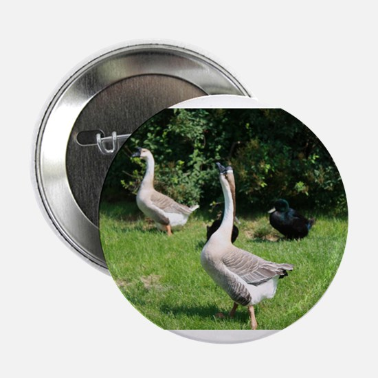 """TWO GEESE 2.25"""" Button"""