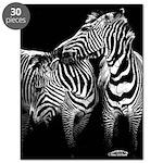 Zebra Lovers Puzzle