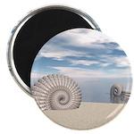 Beach of Shells Magnet