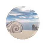 Beach of Shells 3.5