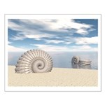 Beach of Shells Posters