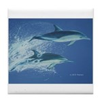 Leaping Dolphins Tile Coaster