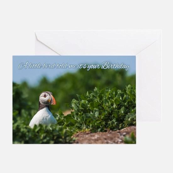 Little Bird Puffin Birthday Card