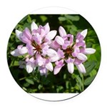 Redbud in MO Cercis canadensis f Round Car Magnet