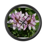 Redbud in MO Cercis canadensis f Large Wall Clock