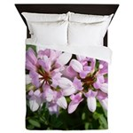 Redbud in MO Cercis canadensis f Queen Duvet